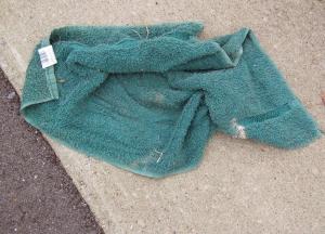 Towel_1876